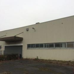 Vente Local d'activités Gretz-Armainvilliers 3872 m²