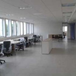Location Local d'activités Le Plessis-Robinson 436 m²