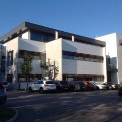 Vente Bureau Neyron 2484,9 m²