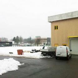 Vente Local d'activités Villeneuve-Saint-Georges 3184 m²