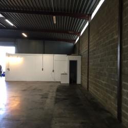 Location Local d'activités Yvrac 250 m²