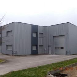 Location Local d'activités Crissey 600 m²