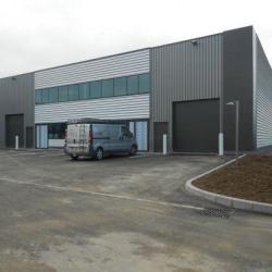 Location Local d'activités Altorf 232 m²