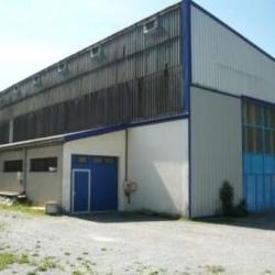 Location Local d'activités Ugine 320 m²