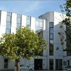 Location Bureau Lyon 7ème 1000 m²