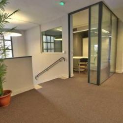 Location Bureau Paris 17ème 390 m²