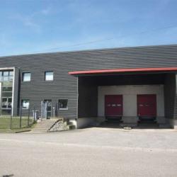 Location Entrepôt Obernai 3530 m²