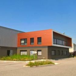 Vente Local d'activités Chaponnay 1727 m²