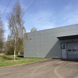 Location Entrepôt Eckbolsheim 600 m²