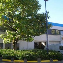 Location Local d'activités Aulnay-sous-Bois 933 m²