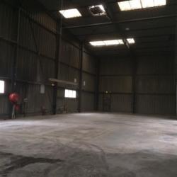 Location Entrepôt Champigny-sur-Marne 2520 m²