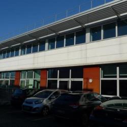Location Entrepôt Roissy-en-France 1677 m²