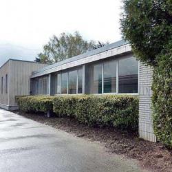Location Bureau Seclin 1100 m²