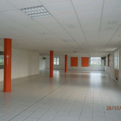 Vente Local commercial Beaucouzé 2837 m²
