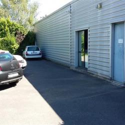 Location Local d'activités Bussy-Saint-Georges 386 m²