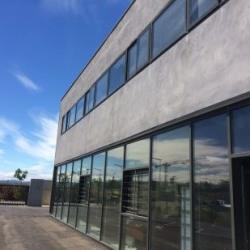 Location Local d'activités Fabrègues 121 m²