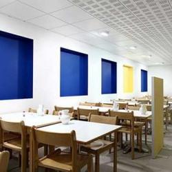 Location Bureau Paris 15ème 2939 m²