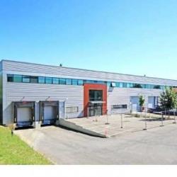 Location Entrepôt Villebon-sur-Yvette 5072 m²