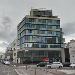 Location Bureau Lyon 7ème 207 m²