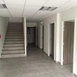 Location Local d'activités Wissous 1320 m²