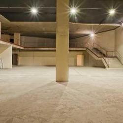 Vente Local d'activités Saint-Cloud 1500 m²