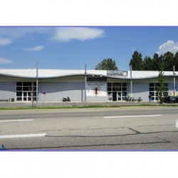 Location Local commercial Nivolas-Vermelle 607 m²