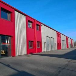 Location Local d'activités Muret 972 m²