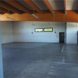 Location Bureau Annecy 1200 m²