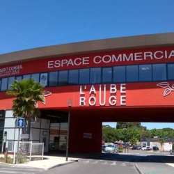 Location Local commercial Castelnau-le-Lez 166 m²