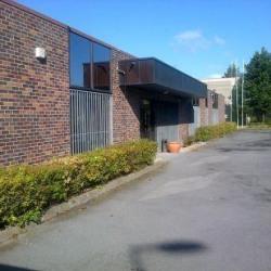 Location Local d'activités Templemars 1400 m²