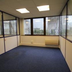 Vente Bureau Toulouse 180 m²