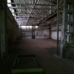 Vente Local d'activités Le Thillay 385 m²