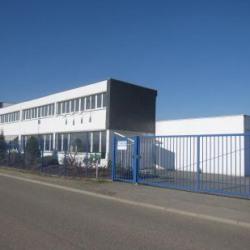 Location Local d'activités Erstein 950 m²