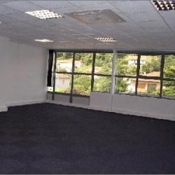 Location Bureau Brignais 72 m²
