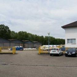 Location Entrepôt Illkirch-Graffenstaden 2540 m²