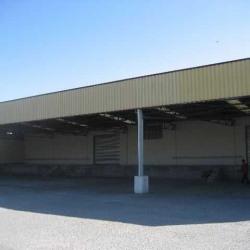 Location Entrepôt Genas 1400 m²