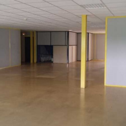 Location Local d'activités Bailly-Romainvilliers 360 m²