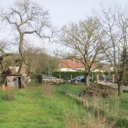 Vente Terrain Forges-les-Bains 895 m²