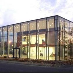 Vente Local d'activités Mundolsheim 1034 m²