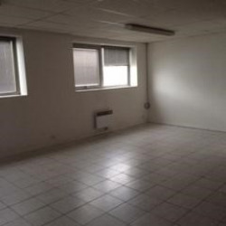 Location Local d'activités Chilly-Mazarin 758 m²