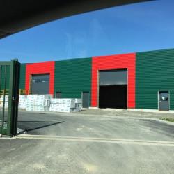 Location Local d'activités Fauville-en-Caux 450 m²