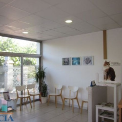 Vente Local commercial Antibes 0 m²