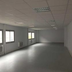 Location Local d'activités Villeneuve-d'Ascq 3914 m²