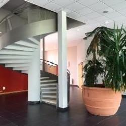 Vente Bureau Moirans 117 m²
