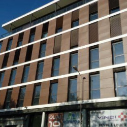 Location Bureau Lyon 2ème 372 m²