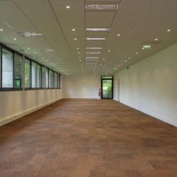 Location Bureau Saint-Rémy-lès-Chevreuse 207 m²