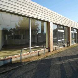 Location Local commercial Cugnaux 146 m²
