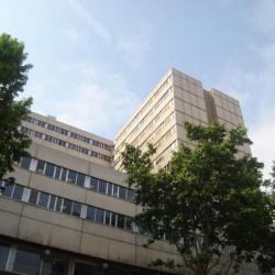 Vente Bureau Lyon 3ème 379,36 m²