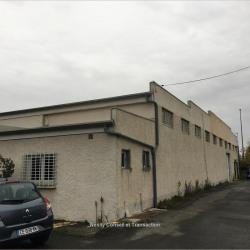 Vente Local d'activités Toulouse (31100)