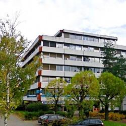 Location Bureau Tassin-la-Demi-Lune 106 m²